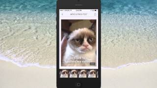 How To Create Memes And Inspirational Photo Quotes On Your IPhone