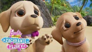 Roztomilé psí oči | Barbie a Sestřičky Zachraňte Pejsky | Barbie