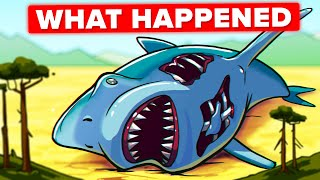 The Why and How of the Megalodon Extinction (What Killed the Giant Shark)