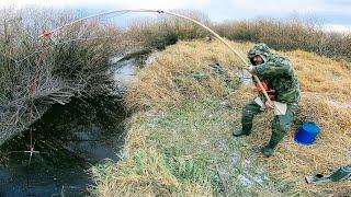 Рыбалка в россии и за рубежом журнал архив