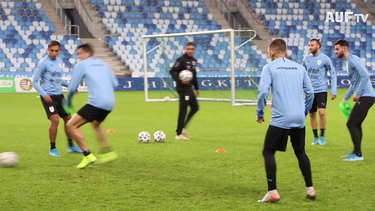 Entrenamiento en el MTK Budapest Stadium - 12/11/19