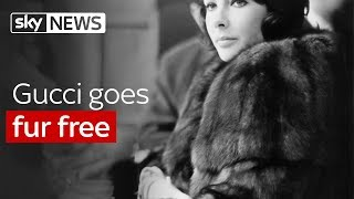 Gucci goes fur free