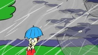 How Much Does A Hurricane Weigh? | Krulwich Wonders | NPR