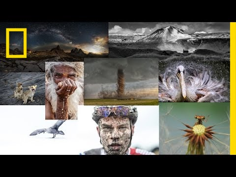 Choosing the Winners of the 2015 National Geographic Photo Contest   National Geographic thumbnail
