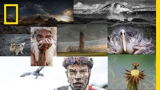 Choosing the Winners of the 2015 National Geographic Photo Contest | National Geographic thumbnail