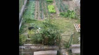Video del alojamiento El Brocal