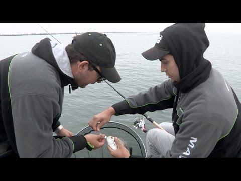 Ragazze sexy su fishings