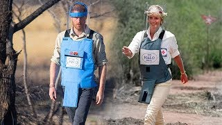 video: Prince Harry speaks of 'emotional' journey to Princess Diana's Angolan landmine fields as he retraces steps 22 years on