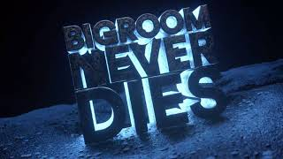 Hardwell & Blasterjaxx Feat. Mitch Crown   Bigroom Never Dies (Visual Video)