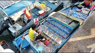 【4K】Afternoon Walk at Sai Kung Hong Kong - Seafood restaurants at Sai Kung Town Centre