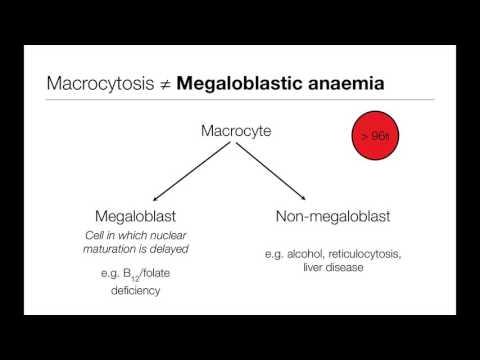 Gyógyszer az emberi test parazitáira Vermox