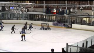 preview picture of video 'Widnes Wild @ Hull Jets (previously known as Hull Stingrays NIHL) 12-10-2013'