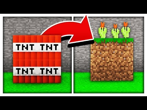 BEST WAY TO HIDE A MINECRAFT TROLL! download YouTube video