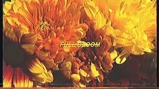 Alpines   Full Bloom (Official Audio)