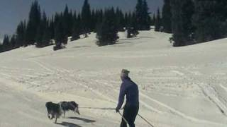 Cross Country Skiing in Colorado