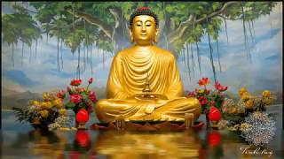 Nhạc Thiền Không Lời   Tĩnh Tâm   An Nhiên   Tự Tại Số 1 | Meditation Music