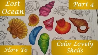 How To Color Lovely Shells