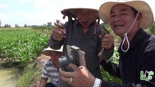 SĂN CHUỘT NHƯNG KẾT QUẢ HOÀN TOÀN KHÁC - TT486
