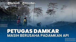 Hari Ketiga Kebakaran Gunungputri di Bogor, Petugas Damkar Masih Berjibaku Memadamkan Api di Lokasi