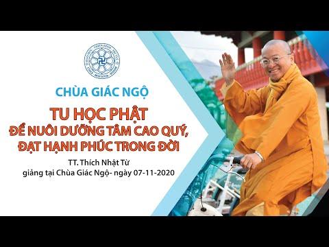 Tu học Phật để nuôi dưỡng tâm cao quý, đạt hạnh phúc trong đời