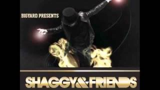 Believer - Shaggy feat. Jaiden