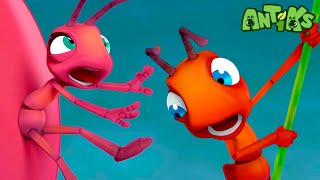 Oddbods Present: Antiks   THERE SHE BLOWS   Funny Cartoons For Kids