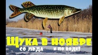 Рыбалка в ноябре на щуку как клюет