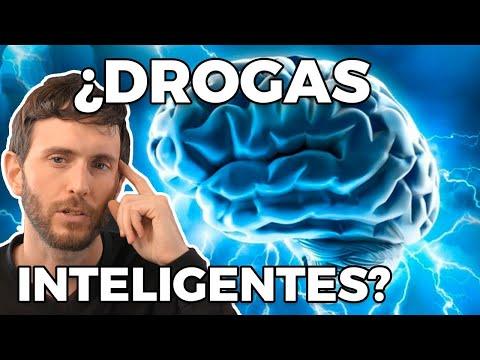 ¿Qué Sustancias Naturales Nos Hacen Más Inteligentes?