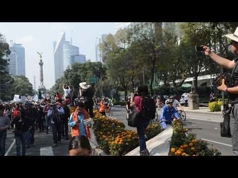 Marcha Fifi, sin camiones, ni acarreados, si hay protesta social