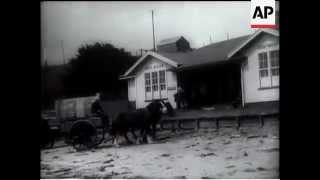 Chatham Islands Filmed for the first time