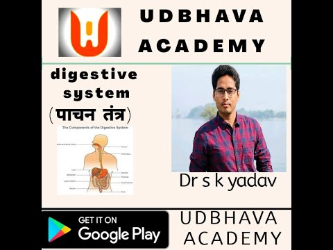 digestive system for NEET | JET | ICAR | NCERT | RBSE | CBSC | XI,XII FOUNDATION
