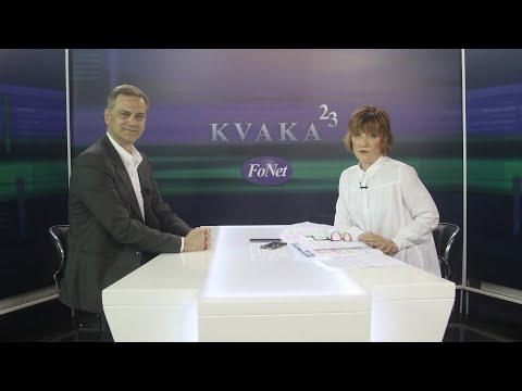 Stefanović: Preko Brisela do odlaganja izbora