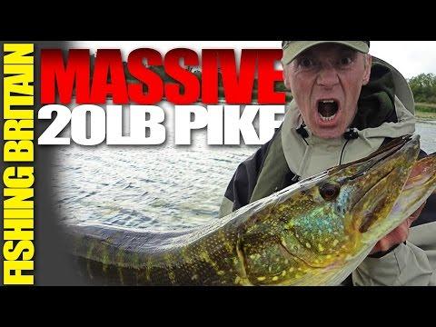 Massive 20 pound Pike