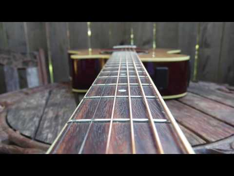 The Police  - Walking On The Moon  - Sting - Acoustic Guitar Classic Rock Cover Song