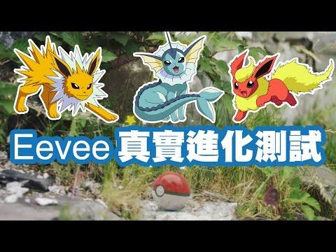 網絡傳言測試 Eevee 伊貝進化前要先改名