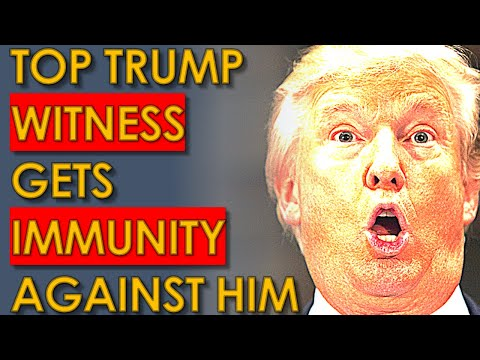 Trump WITNESS gets IMMUNITY to TESTIFY Against him and his KIDS
