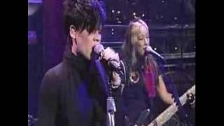 Pink-Family Portrait Live [David Letterman]