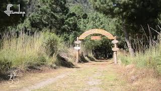 Presentación del Programa Forestal Ambiental