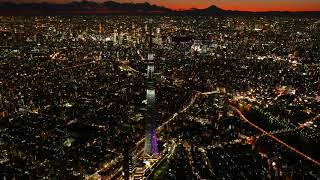 معلومات عن مدينة طوكيو اليابانية سطور