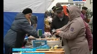 """Ярмарка """"Осень-2016"""" 15 октября в """"Гармонии"""". Вести, Ставропольский край"""