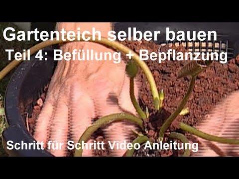 Gartenteich selber bauen - Teil 4: Befüllung und Bepflanzung - Gartenteich bepflanzen Video