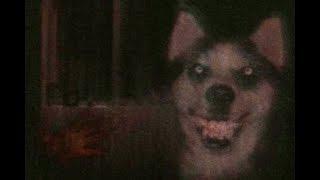 Roblox : Horror Stories เรื่องเล่าสยองขวัญในโรบล็อค (ภาพหมายิ้ม Annabelle และ แคมป์สยองขวัญ)