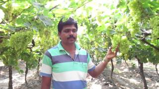 Solapur Sunil gawli