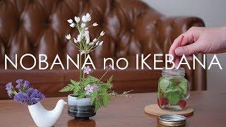 【生け花】基本を押さえた小さなお花 Ikebana Flower Of Tea Time