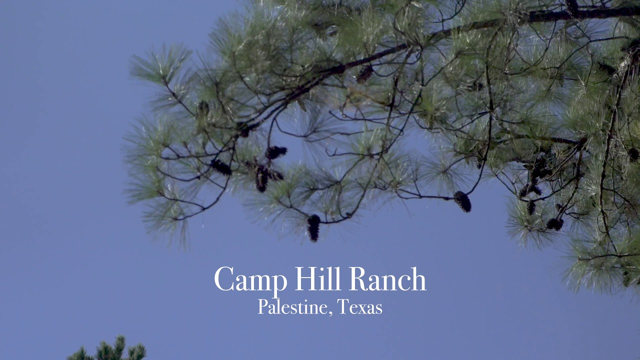 Camp Hill High-Fenced Trophy Ranch