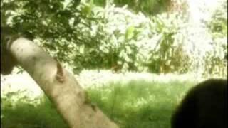 Yo Tambien - Gerardo Lopez  (Video)