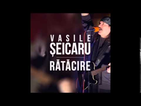 Vasile Şeicaru - Copilul de pripas