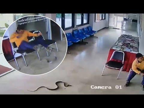 Schlange im Wartesaal