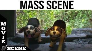 Bommai Naigal -  Mass Scene   S S Baba Vikram   Karunas   Crane Manohar   Kovai Sarala
