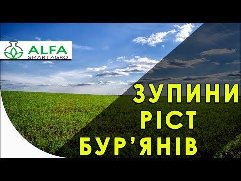 Гербицид на зерновые Альфа Стар